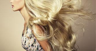 כל מה שרצית לדעת על סדרת מוצרי השיער שלנו!