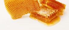 דונג דבורים